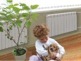 Какие радиаторы отопления выбрать в квартиру?