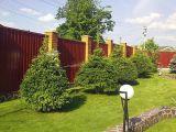 Ландшафтный дизайн: где нельзя высаживать деревья?