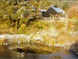 Подготовка прудового оборудования к зиме