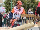 Всероссийский чемпионат вальщиков леса 2014