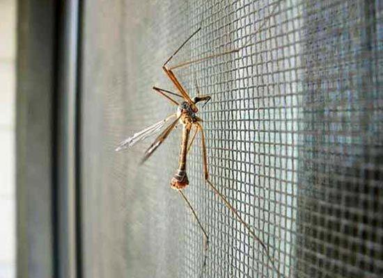 Как сделать сетку от комаров на окно своими руками