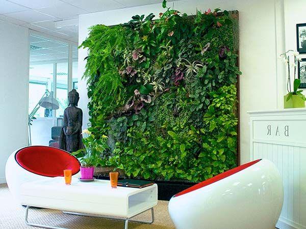 Вертикальное озеленение интерьеров